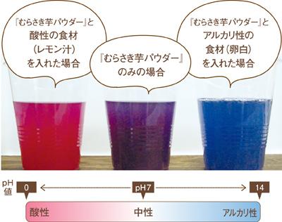 紫芋パウダーpHによる色の変化写真